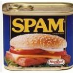 De enige echte originele en niet erg lekkere spam.
